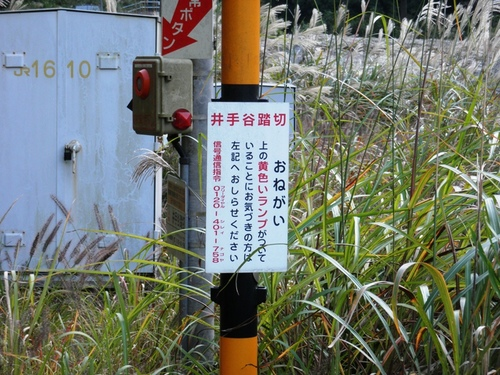井出谷踏切2.JPG